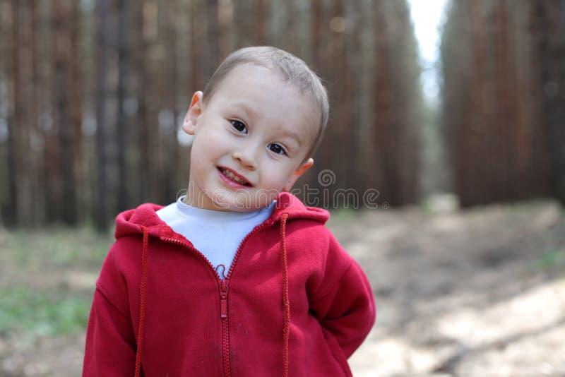 Мальчик Litlle в лесе стоковые изображения