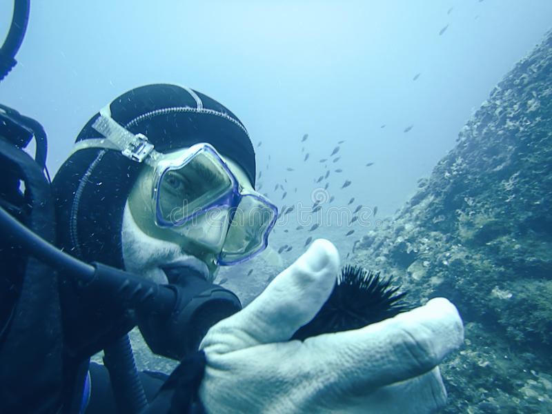 Мальчишка моря на руке водолаза подводной стоковая фотография rf