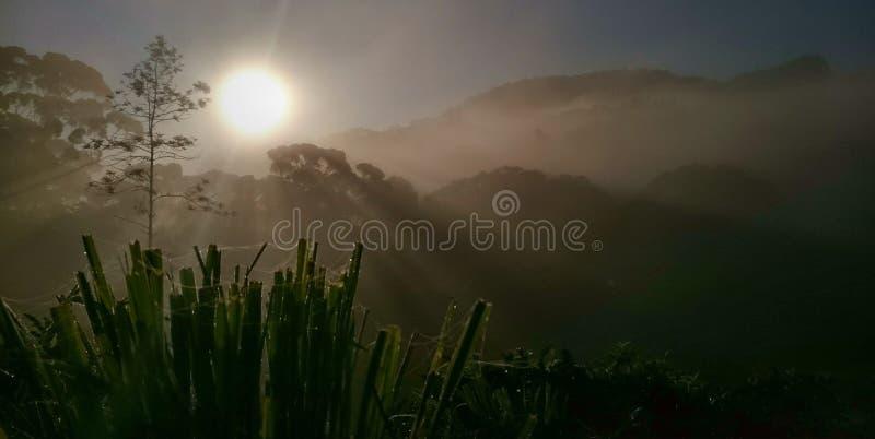 Мглистый восход солнца стоковая фотография