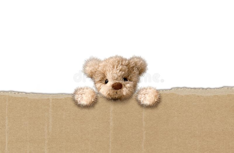 Медведь игрушки пушистый, белая предпосылка стоковое изображение rf