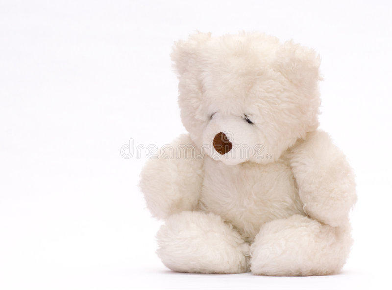 медведь унылый стоковая фотография