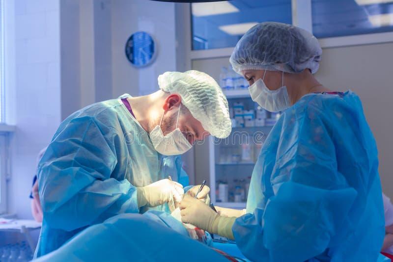 Медицинская бригада выполняя хирургическую операцию в современной операционной Rhinoplasty стоковые фотографии rf