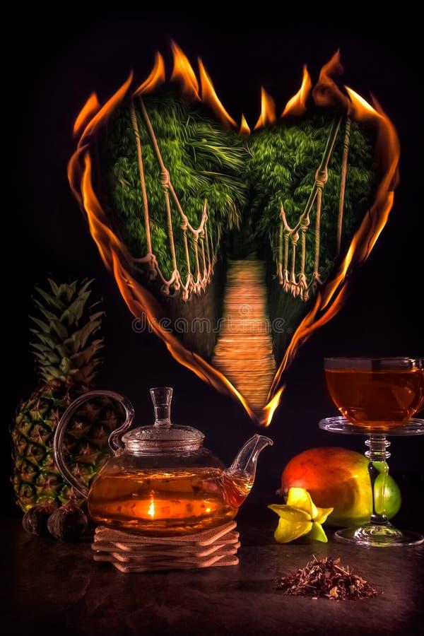 Медицинский чай, огонь от чайника стоковая фотография