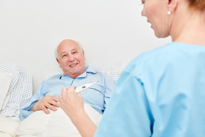 Медсестра с термометром лихорадки стоковые фото