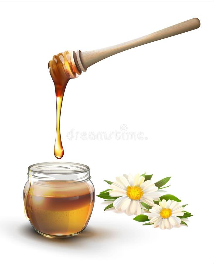 Мед и цветки на белизне бесплатная иллюстрация