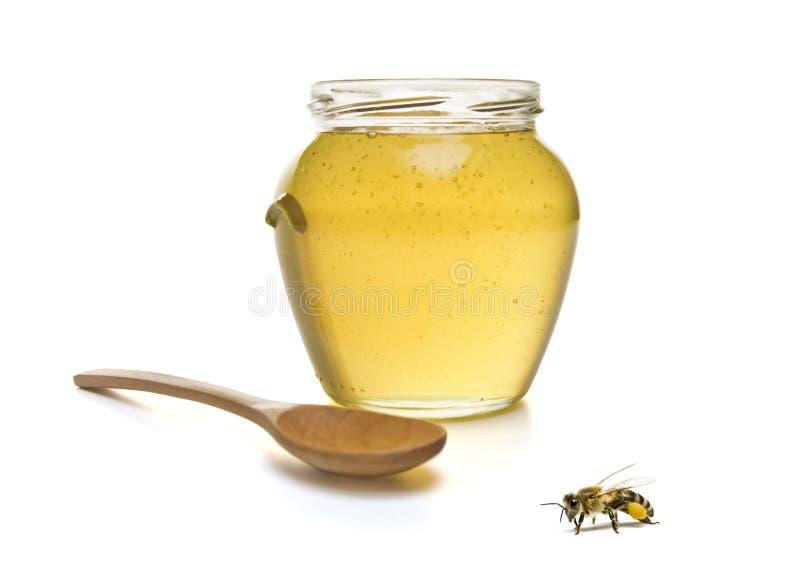 мед пчелы стоковые изображения rf