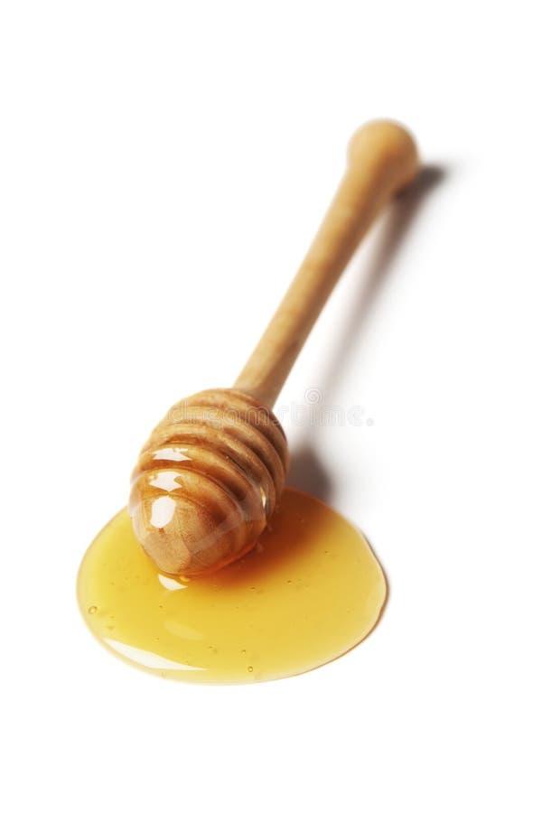 мед dipper стоковая фотография