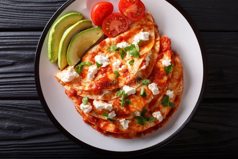 Мексиканская еда: entomatadas с сыром фермы, томатным соусом, зелеными цветами стоковое изображение rf