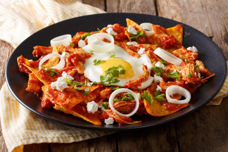 Мексиканские nachos с сальсой томата, цыпленком и концом-вверх яичка Hori стоковая фотография