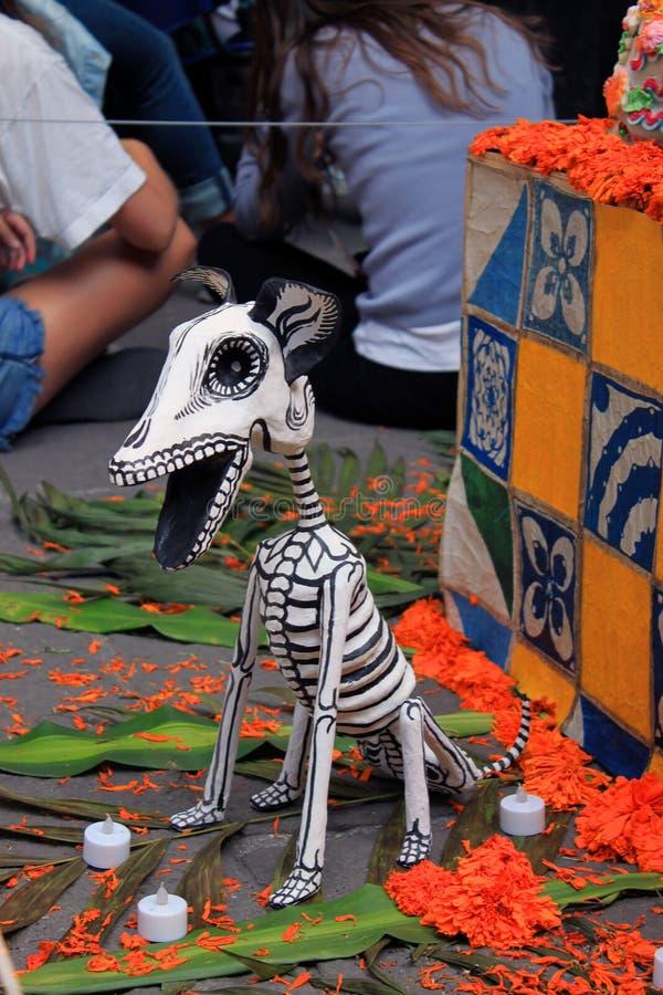 Мексиканский красочный день скелета dias de los muertos собаки смерти мертвой стоковые фотографии rf