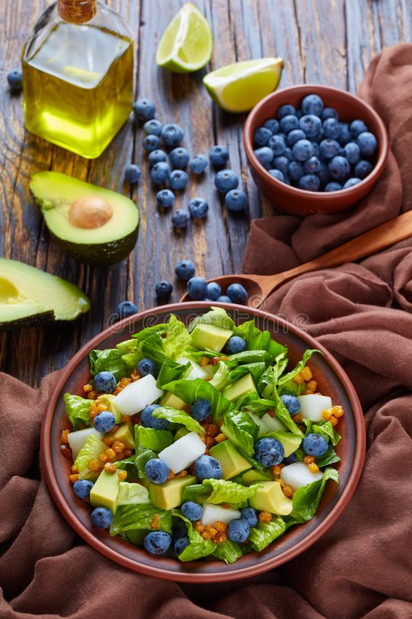 Мексиканский салат с jicama и ягодами стоковая фотография rf