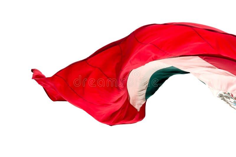Мексиканский флаг стоковое фото rf