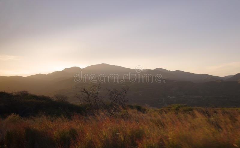 Download Мексиканський ландшафт стоковое фото. изображение насчитывающей bush - 40579494