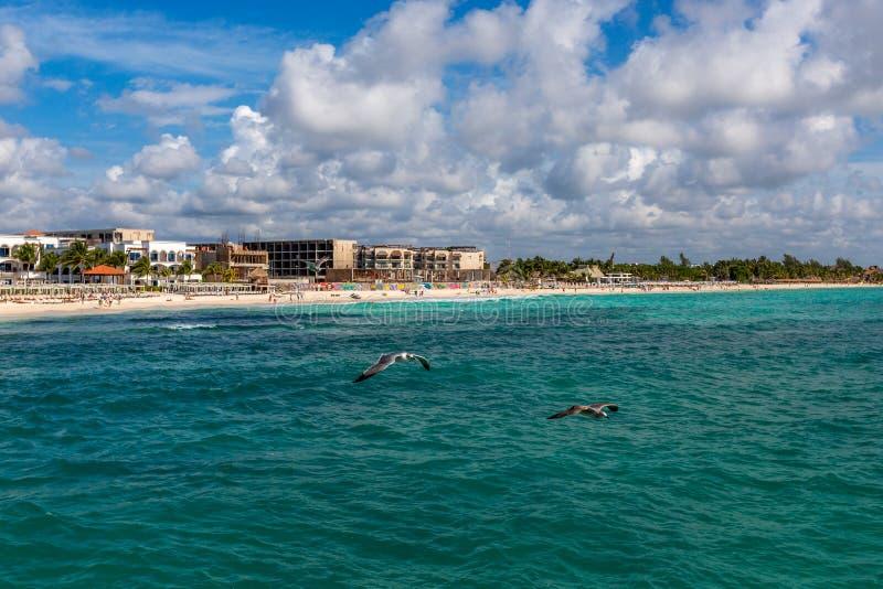 Мексиканський пляжный комплекс стоковое фото rf