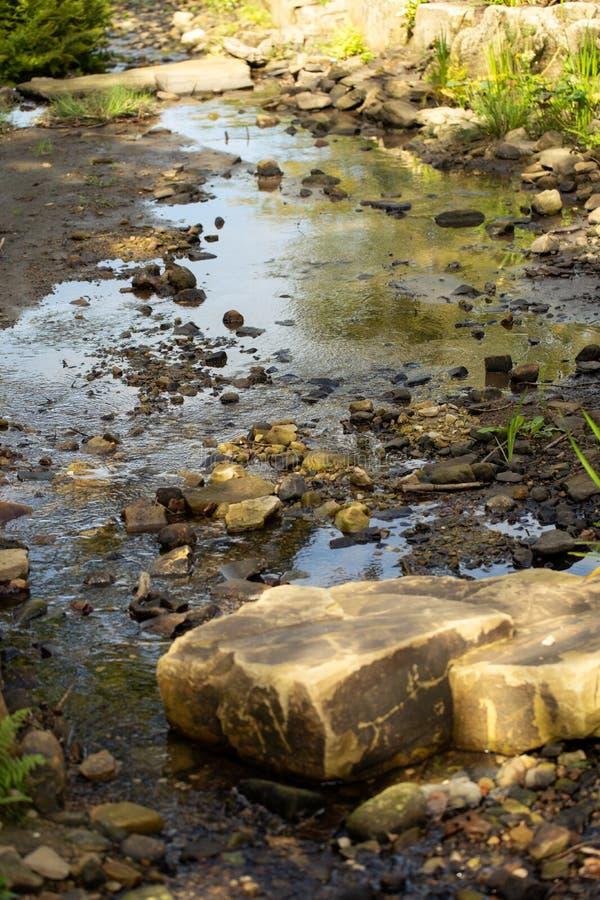 Мелкий поток засорянный с утесами и камешками стоковые фотографии rf