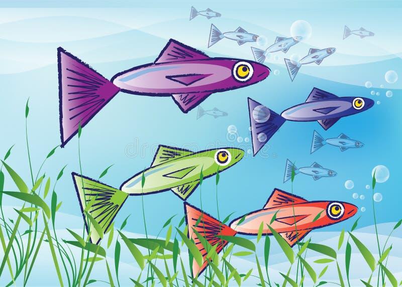 мелководье рыб иллюстрация вектора