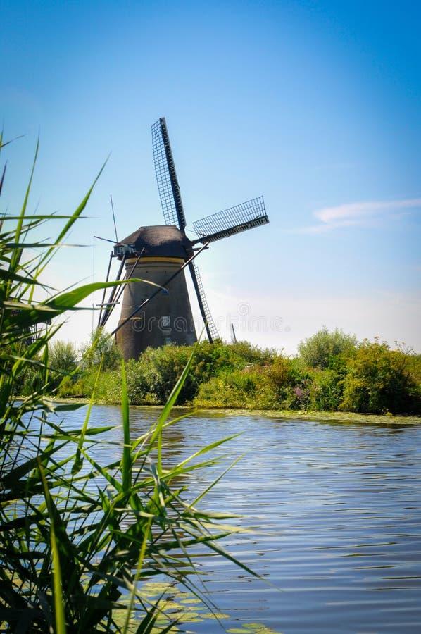 Мельницы рекой в Kinderdijk стоковая фотография