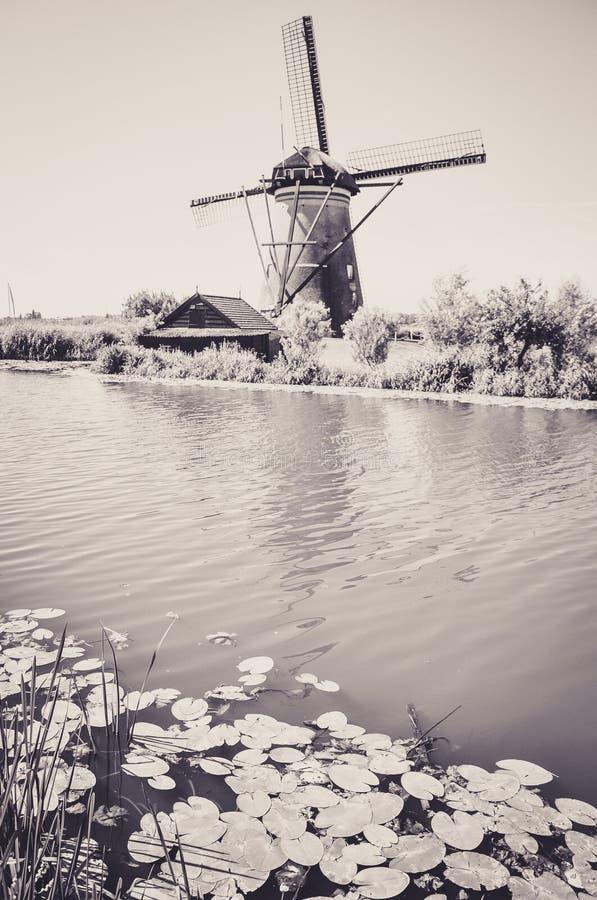 Мельницы рекой в Kinderdijk стоковое фото