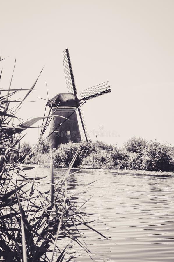 Мельницы рекой в Kinderdijk стоковые изображения rf
