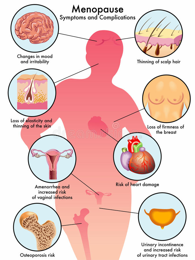 менопауза иллюстрация штока