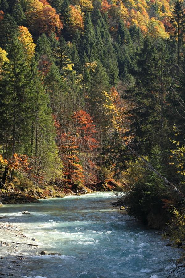Меньшее река на осени стоковые фото