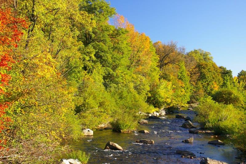 меньшее tamaqua schuylkill реки Пенсильвании стоковые фотографии rf