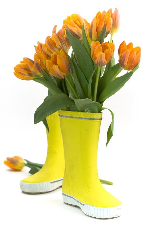 Меньшие ботинки дождя и свежие тюльпаны Стоковая Фотография