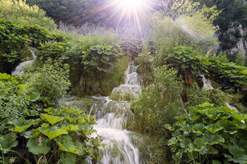 Меньший водопад на озерах Plitvice, Хорватии стоковое фото rf