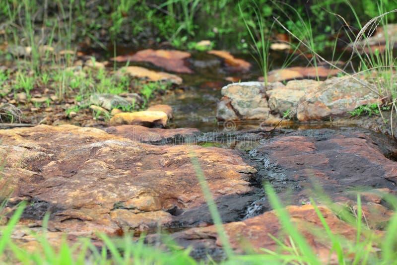 Меньший поток на сезоне дождей стоковые фотографии rf