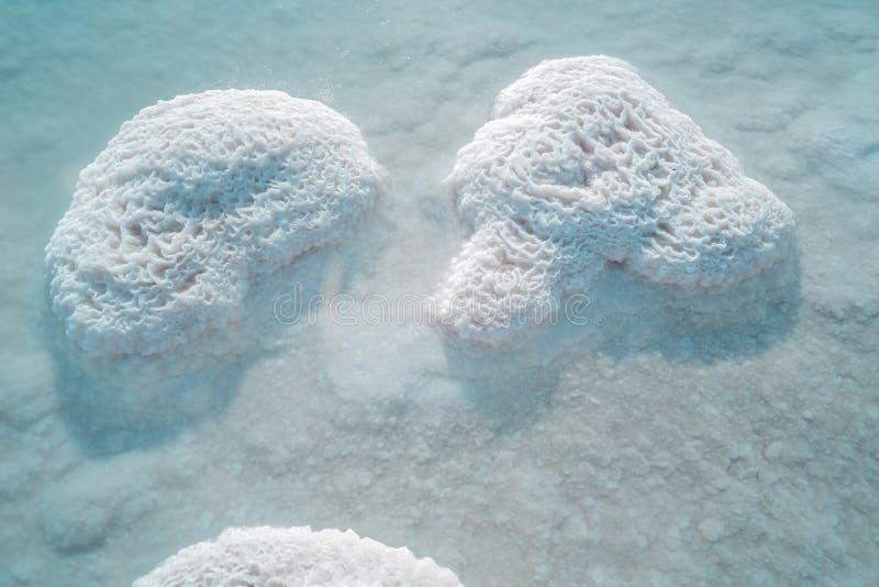 мертвое море соли стоковые фотографии rf