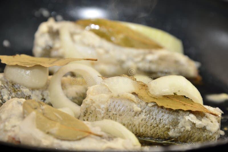 Мерлузы на лотке стоковое фото