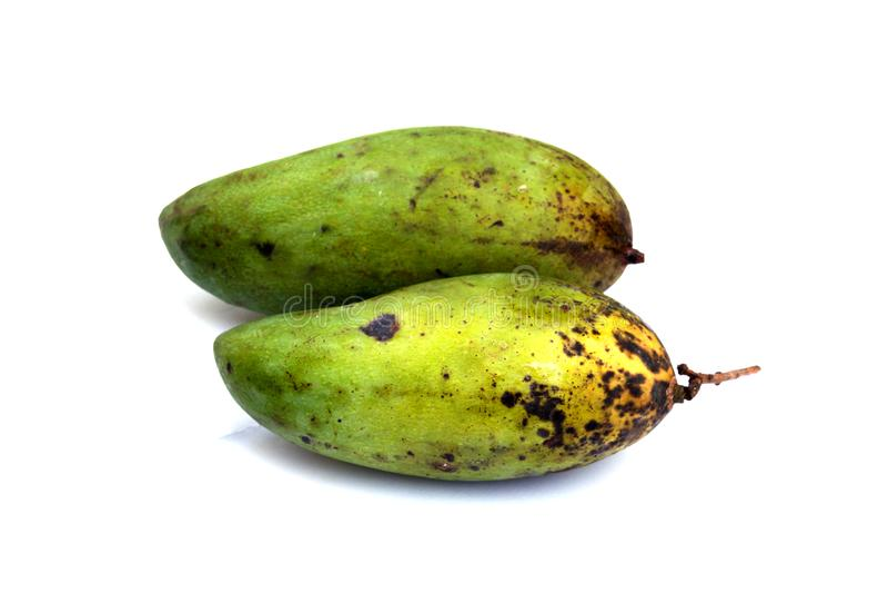 Местное манго изолированное на белой предпосылке стоковая фотография