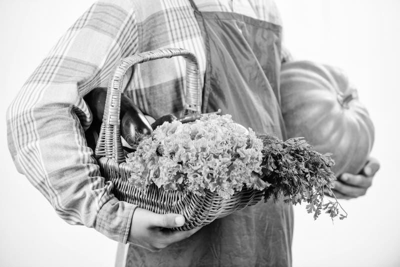 Местно выращенные продукты Сельское хозяйство и сельское хозяйство Фармер носит фартук держать тыкву белый фон Концепция сельског стоковая фотография rf