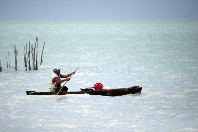 Местный рыболов проверяя его ловушки стоковое изображение rf