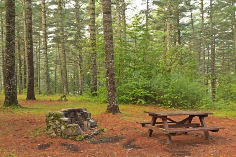 место для лагеря adirondacks стоковое фото rf
