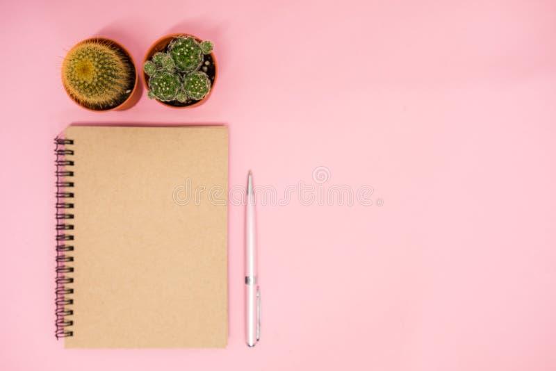 Место для работы предпосылки дела взгляд сверху с кактусом, ручкой и blan стоковая фотография