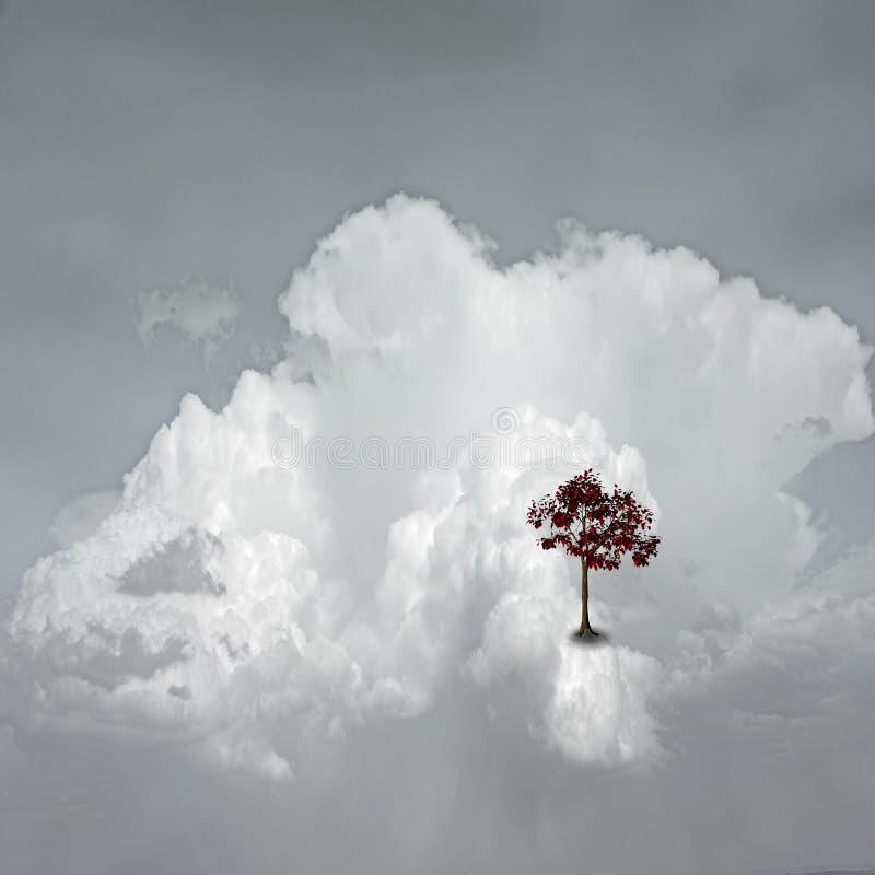 место облака мечт стоковое фото