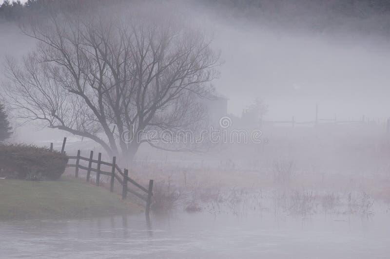 Download место тумана стоковое изображение. изображение насчитывающей зима - 476317