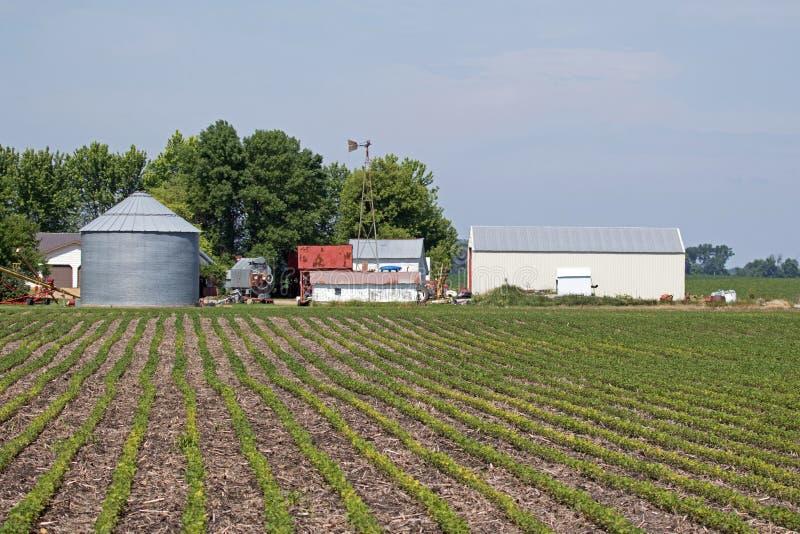 Место фермы Минесоты стоковое изображение rf