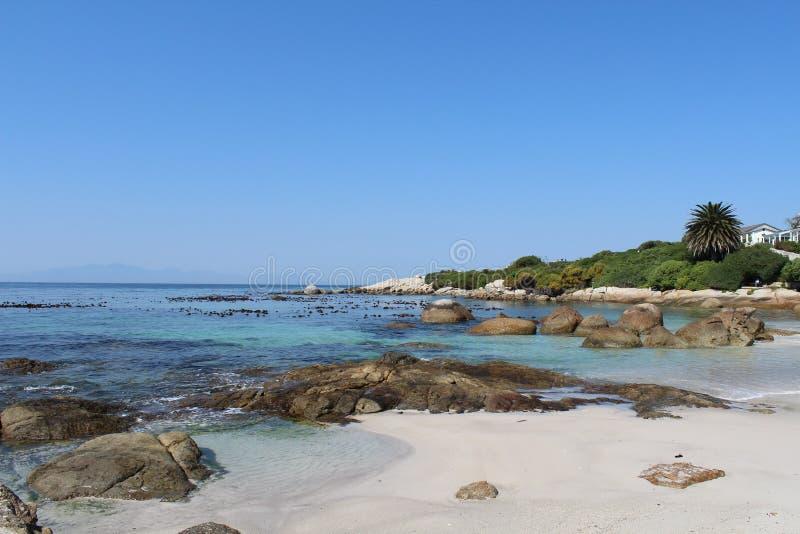 место людей группы пляжа ослабляя sunbathing стоковое фото