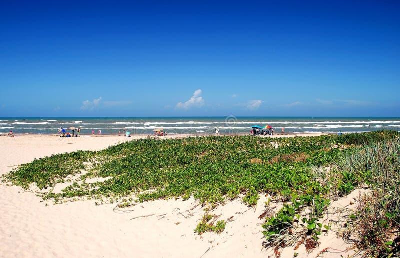 место padre острова пляжа южное стоковые изображения rf
