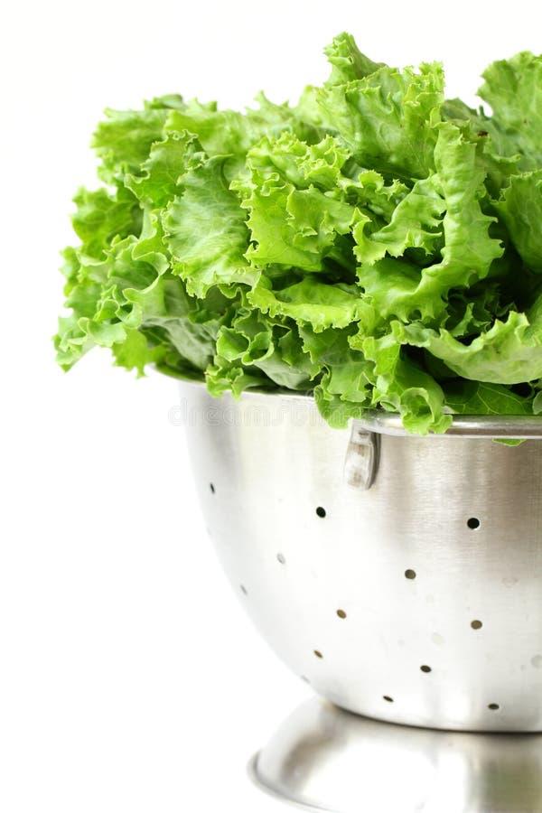 металл салата colander зеленый стоковые изображения