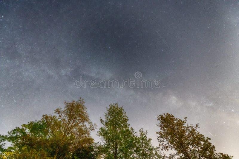 Метеорные потоки Perseids Звезды стрельбы на небе лета ночи стоковая фотография rf