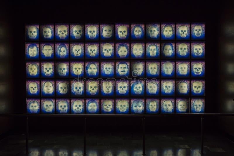 МЕХИКО - 1-ОЕ АВГУСТА 2016: Интерьер Национального музея антропологии в Мехико стоковая фотография