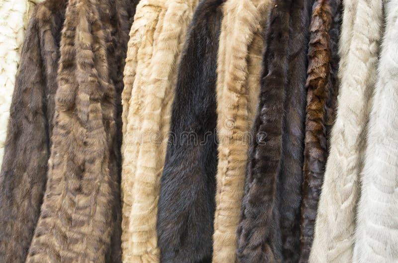 Меховые шыбы женщин стоковое фото rf