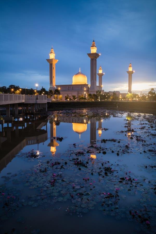Мечеть Bukit Jelutong с лотосом на переднем плане во время голубого часа в утре стоковое фото rf