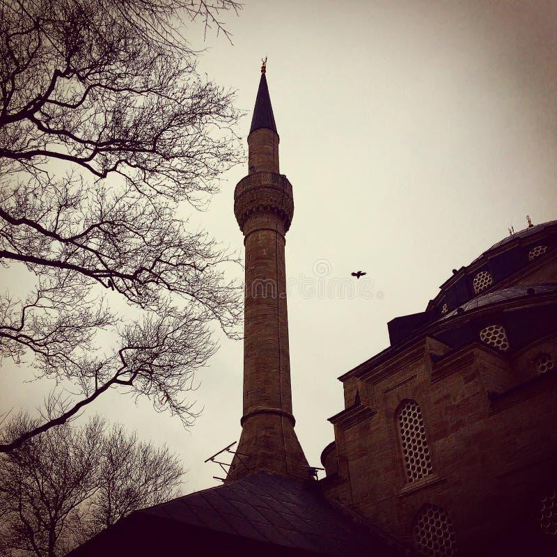 Мечеть Mihrimahsultan стоковое изображение rf