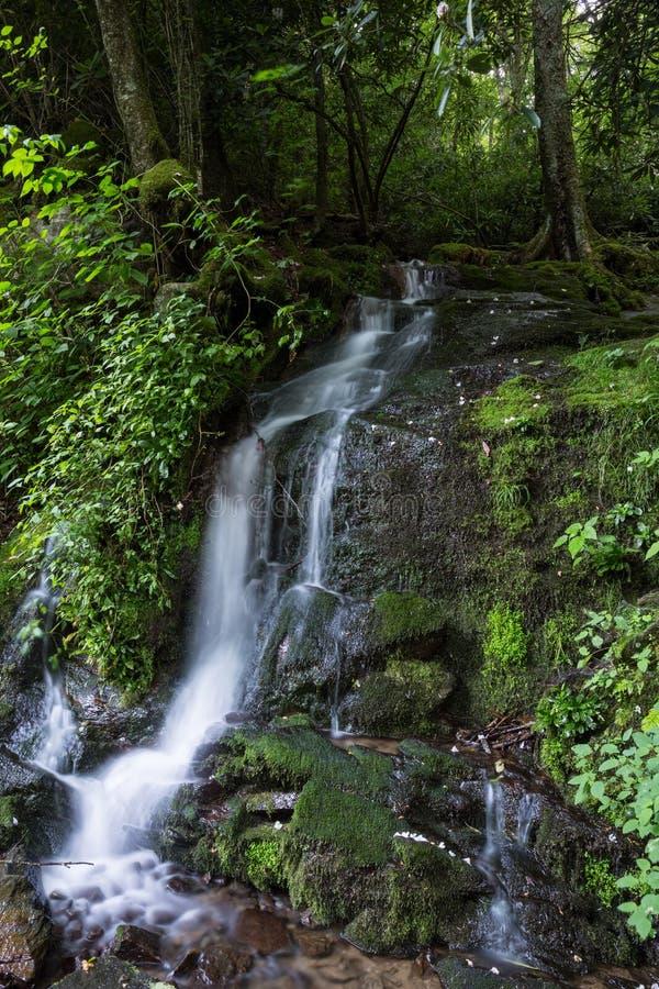 Мечтательный водопад в больших закоптелых горах стоковые фото