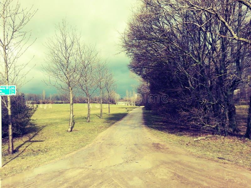 Мечтательный путь стоковое изображение