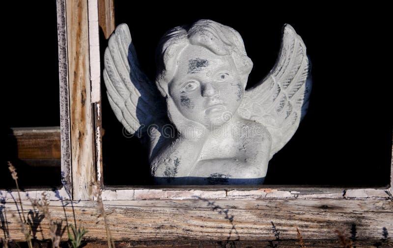 Мечтать ангел стоковое изображение
